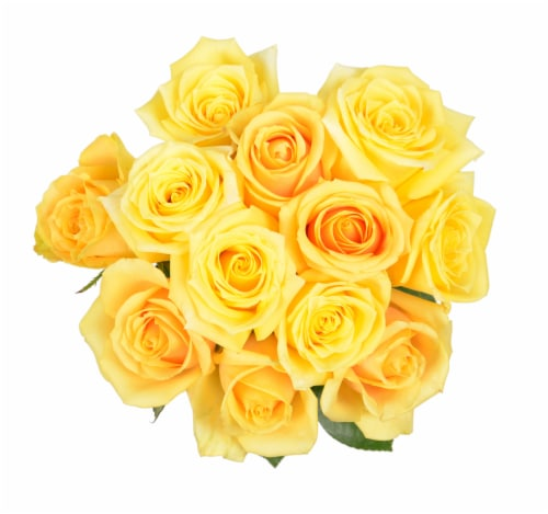 Passion Growers Dozen Fresh Cut Yellow Roses (Approximate Delivery is 1-3 Days) Perspective: front