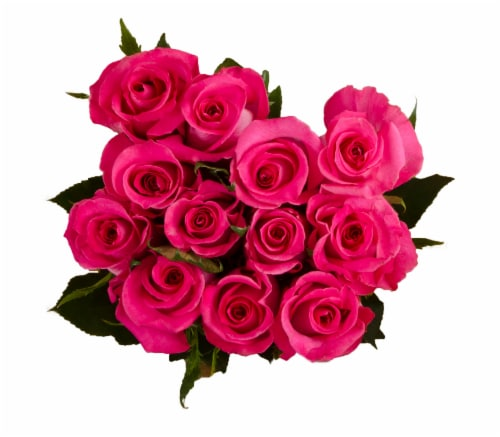 Passion Growers Dozen Fresh Cut Hot Pink Roses (Approximate Delivery is 1-3 Days) Perspective: front