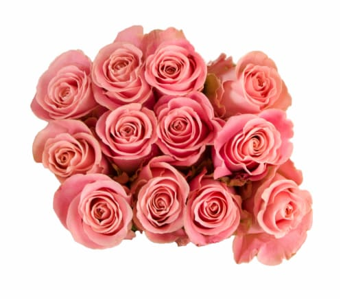 Passion Growers Dozen Fresh Cut Pink Roses (Approximate Delivery is 1-3 Days) Perspective: front
