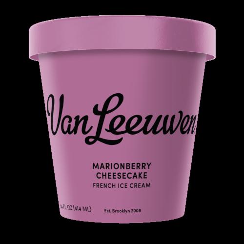 Van Leeuwen Marionberry Cheesecake Frozen Dessert  (8 Count) Perspective: front