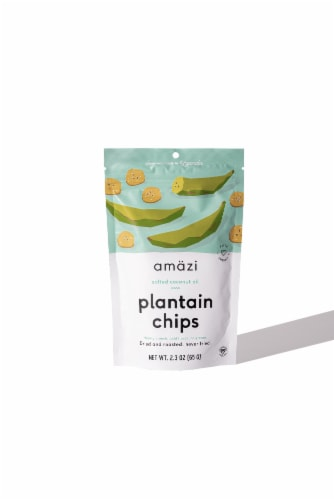 Salted Coconut Oil Plantain Chips, Case of 6 Perspective: front