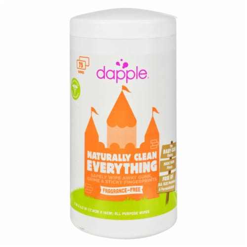 Dapple Surface Wipes for Highchairs Toys and More Fragrance Free - 75 Wet Wipes Perspective: front