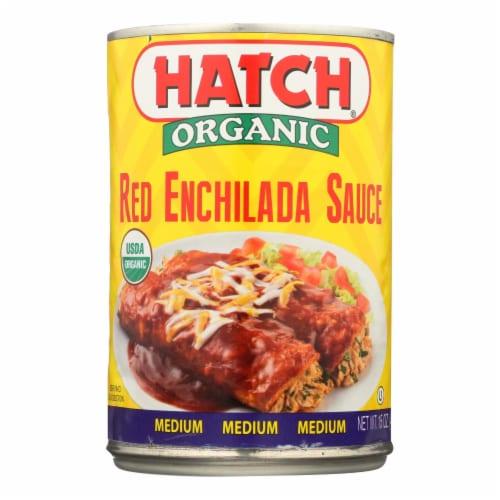 Hatch Chili Hatch Enchilada Sauce - TexMex - Case of 12 - 15 Fl oz. Perspective: front