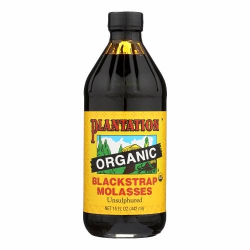Plantation Organic Blackstrap Molasses Syrup - Case of 12 - 15 oz. Perspective: front