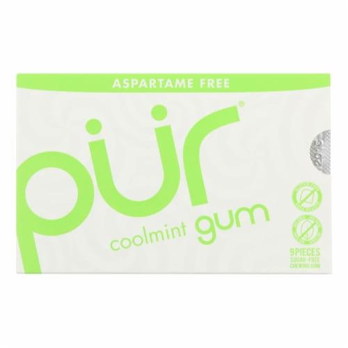 Pur Gum - Coolmint - Aspartame Free - 9 Pieces - 12.6 g - Case of 12 Perspective: front