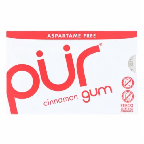Pur Gum - Cinnamon - Aspartame Free - 9 Pieces - 12.6 g - Case of 12 Perspective: front