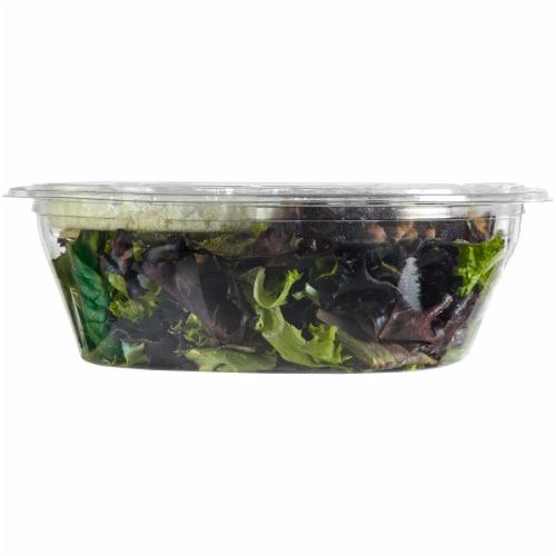 Kroger® Cranberry Walnut Salad Kit Perspective: left