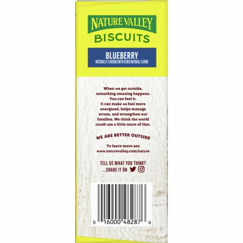 Nature Valley Blueberry Biscuits 5 Count Perspective: left