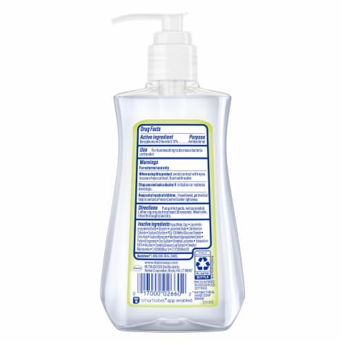 Dial Complete® White Tea Antibacterial Liquid Hand Soap Perspective: left