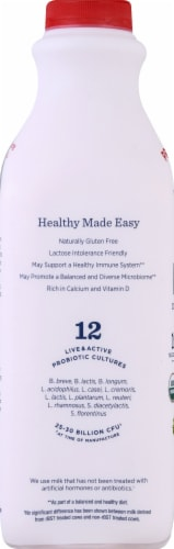 Lifeway Organic Low Fat Strawberry Kefir Perspective: left