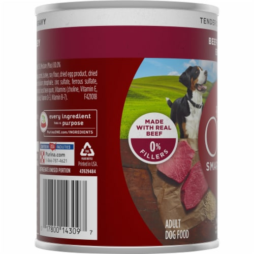 Purina ONE Natural SmartBlend Tender Cuts in Gravy Beef & Barley High Protein Wet Dog Food Perspective: left