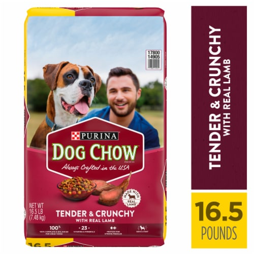 Dog Chow Tender & Crunchy with Real Lamb Adult Dry Dog Food Perspective: left