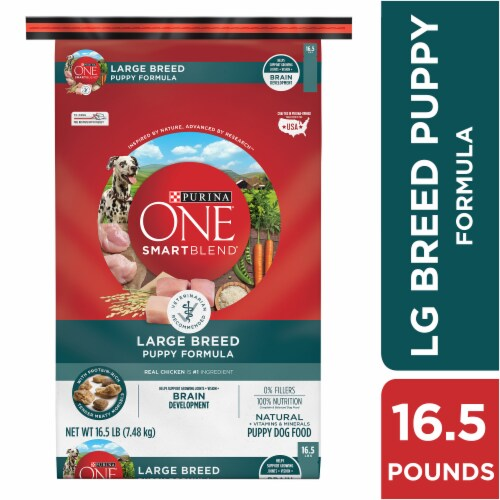 Purina ONE SmartBlend Large Breed Puppy Formula Dry Dog Food Perspective: left