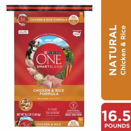 Purina ONE SmartBlend Chicken & Rice Formula Natural Dry Adult Dog Food Perspective: left