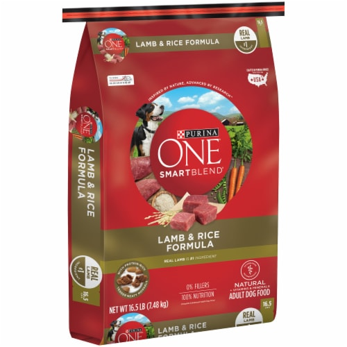 Purina ONE SmartBlend Lamb & Rice Formula Natural Dry Adult Dog Food Perspective: left