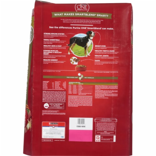 Purina ONE SmartBlend Lamb & Rice Formula Natural Dry Dog Food Perspective: left