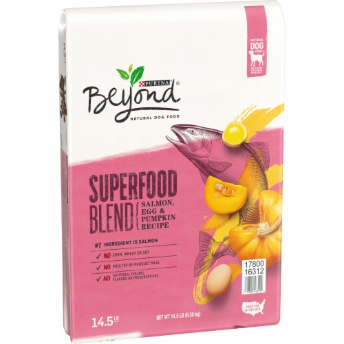 Beyond Superfood Blend Salmon Egg & Pumpkin Recipe Adult Dry Natural Dog Food Perspective: left