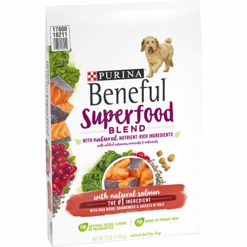 Beneful Superfood Blend Salmon Dry Dog Food Perspective: left