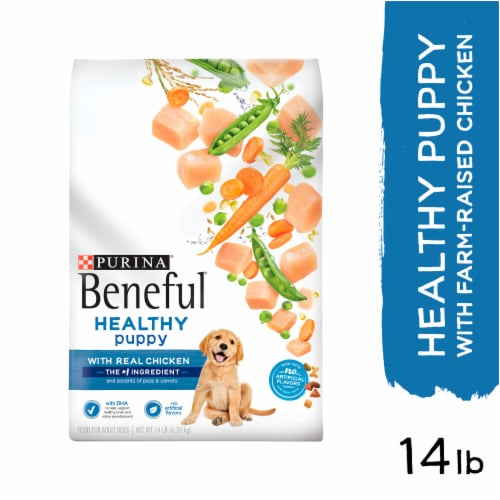 Purina Beneful Healthy Puppy With Real Chicken Dry Dog Food Perspective: left
