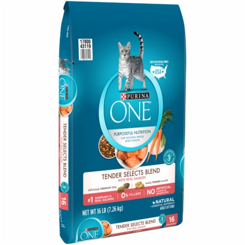 Purina ONE Tender Selects Blend with Real Salmon Natural Dry Cat Food Perspective: left
