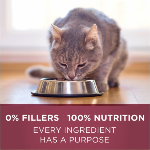 Purina ONE Urinary Tract Health Formula Dry Cat Food Perspective: left