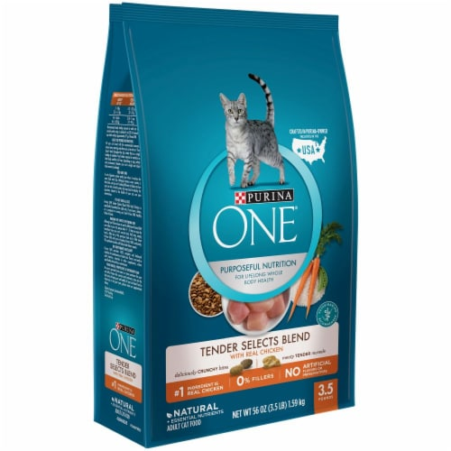 Purina ONE Tender Selects Blend with Real Chicken Natural Dry Cat Food Perspective: left