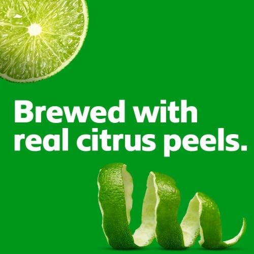 Bud Light Lime Light Lager Beer Perspective: left