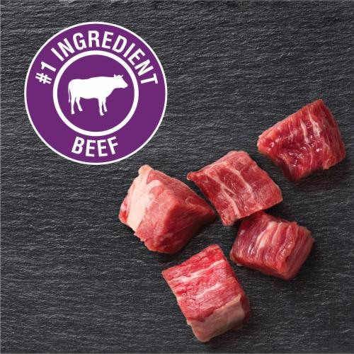 Cesar Canine Cuisine Filet Mignon Flavor Wet Dog Food Perspective: left