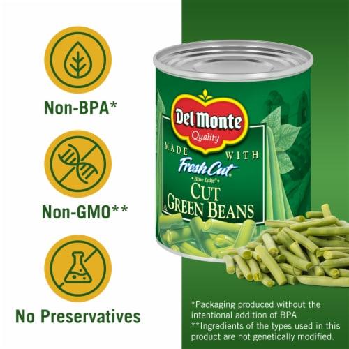 Del Monte® Fresh Cut Blue Lake Green Beans Perspective: left