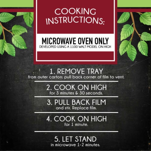 Smart Ones Savory Italian Recipes Chicken Fettuccine Frozen Meal Perspective: left