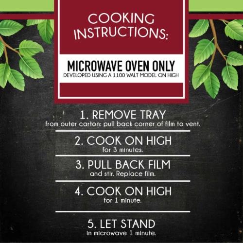 Smart Ones Savory Italian Recipes Angel Hair Marinara Perspective: left