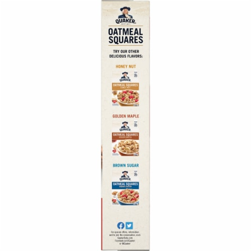 Quaker Cinnamon Oatmeal Squares Breakfast Cereal Perspective: left