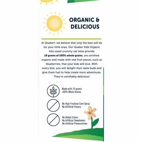 Quaker Kids Organic Whole Grain Blueberry Bites Perspective: left