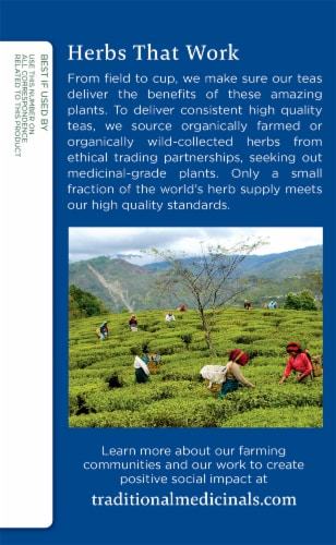 Traditional Medicinals Organic Nighty Night Tea Bags Perspective: left