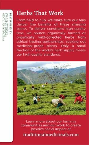 Traditional Medicinals Organic Echinacea Plus Tea Bags Perspective: left