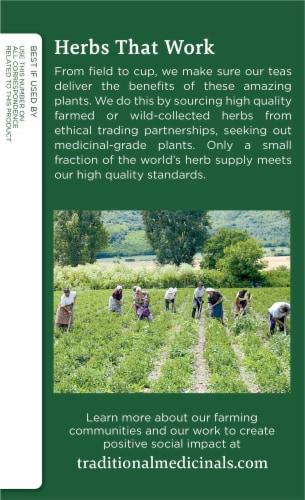 Traditional Medicinals Yellow Pau d' Arco Tea Bags Perspective: left