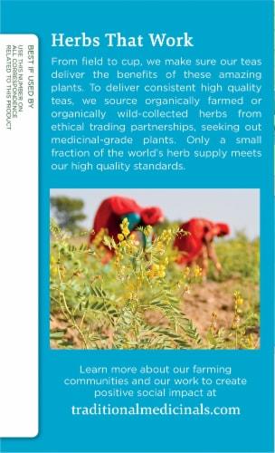 Traditional Medicinals Organic EveryDay Detox Dandelion Herbal Tea Bags Perspective: left