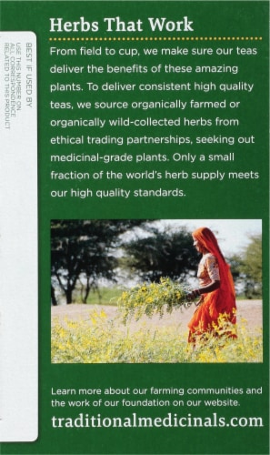 Traditional Medicinal Tulsi With Ginger Tea Bags 16 Count Perspective: left