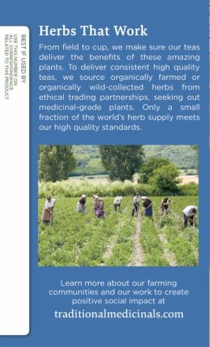 Traditional Medicinals Kanna Honeybush Organic Cup of Sunshine Tea Perspective: left