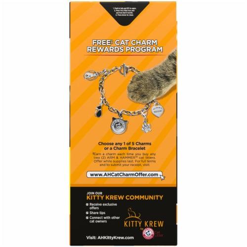 Arm & Hammer™ Clump & Seal AbsorbX Multi-Cat Litter Perspective: left