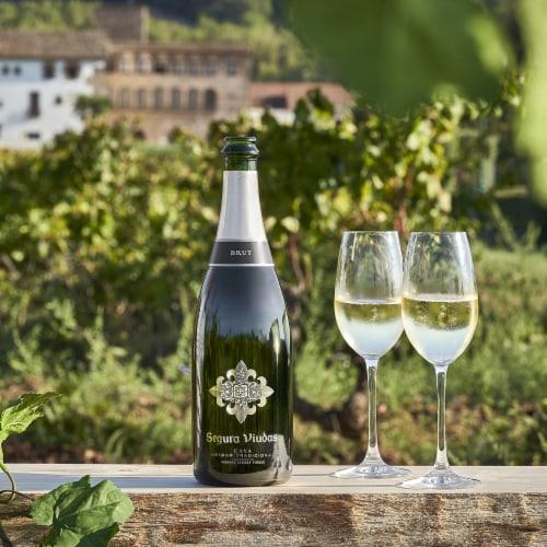 Segura Viudas Brut Reserva Sparkling Wine Perspective: left