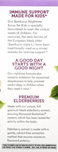 Nature's Way Sambucus Standardized Elderberry Nighttime Syrup Perspective: left