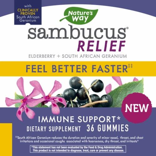 Nature's Way Sambucus® Relief Immune Support Gummies Perspective: left