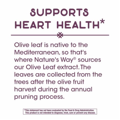 Nature's Way Olive Leaf Standardized Vegan Capsules 250mg Perspective: left