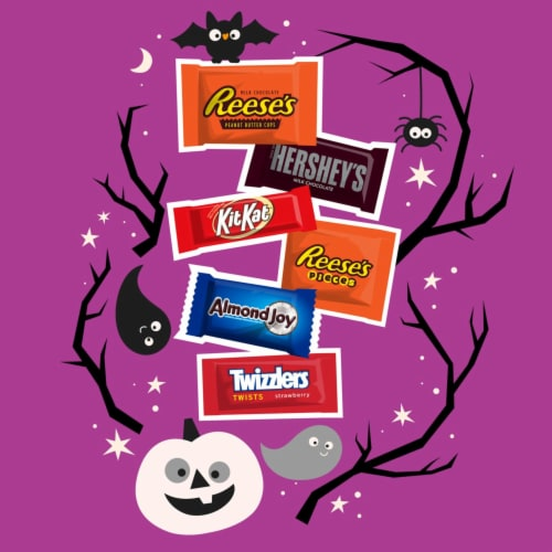 Hershey's All Time Greats Chocolate and Sweets Snack Size Candy Assortment Perspective: left