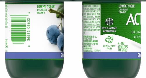 Activia Lowfat Blueberry Probiotic Yogurt Perspective: left