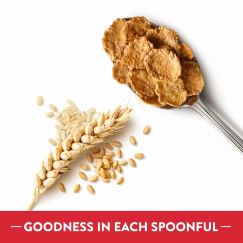 Kellogg's Special K Protein Breakfast Cereal Original Multi-Grain Touch of Cinnamon Perspective: left