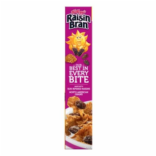 Kellogg's Raisin Bran Cereal Family Size Perspective: left