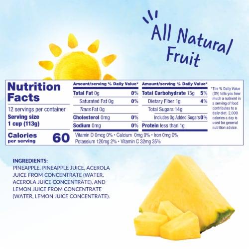 Dole Pineapple Paradise in 100% Juice Fruit Tidbits Perspective: left