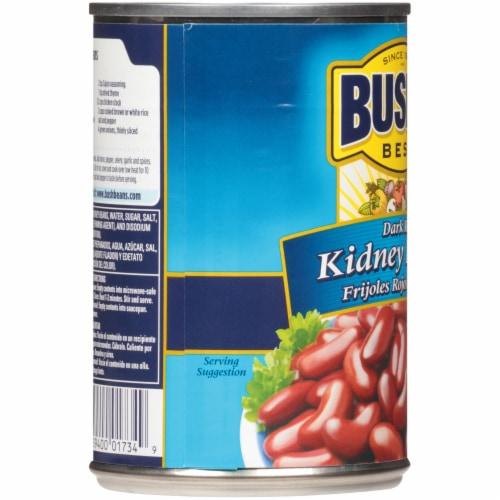 Bush's Best Dark Red Kidney Beans Perspective: left